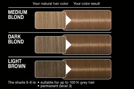 Syoss Color Classic 6 8 Dark Blond German Drugstore